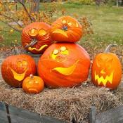 Helovinas (7)